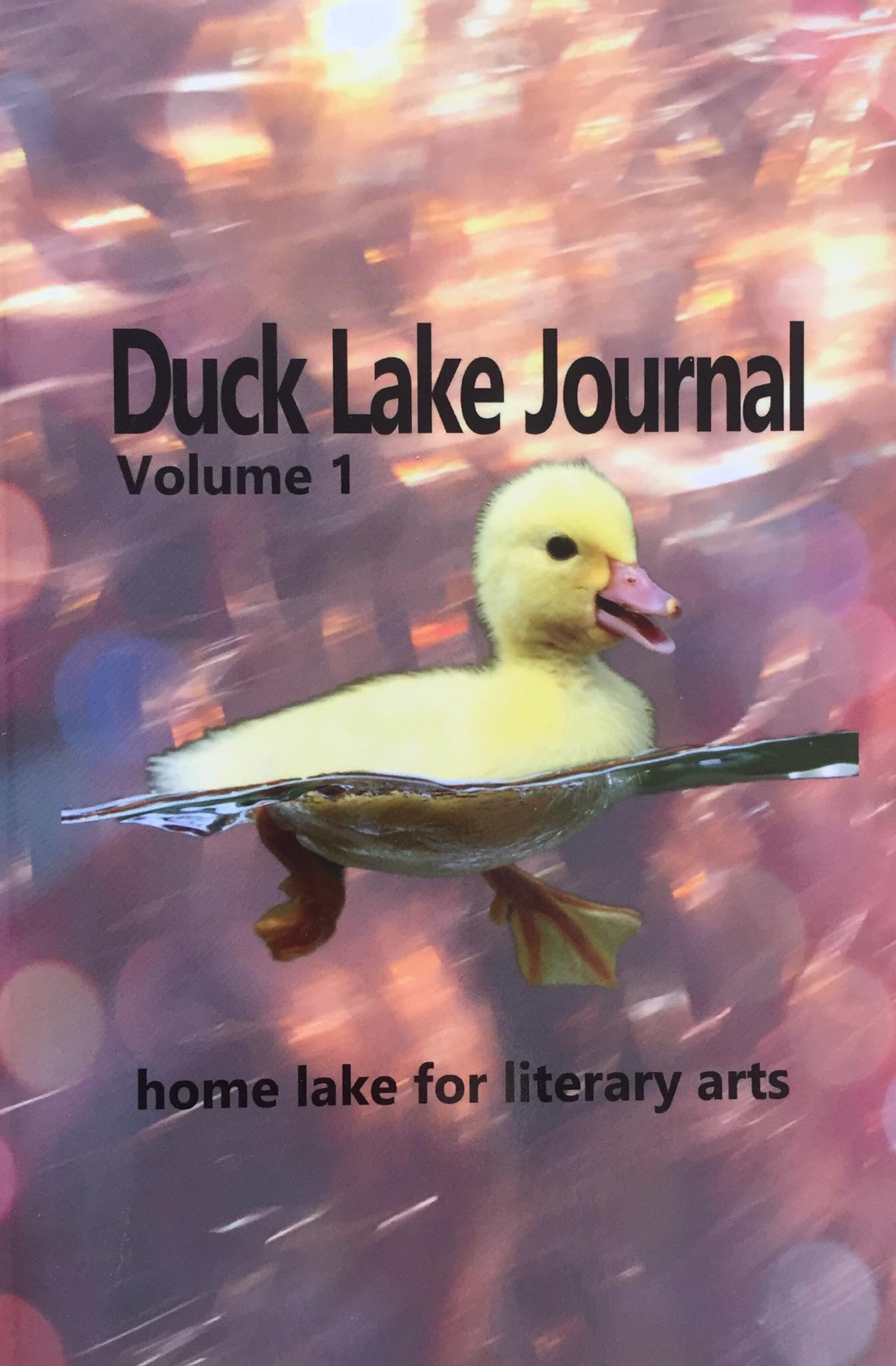 "Poems from ""The Ropewalker"" series in Duck Lake Journal (US)"