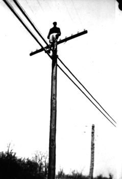 The Telegraph Wires Stretched Taut
